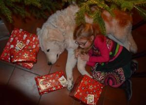 Nele und Írisz Weihnachten 16.2