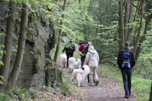 Wanderung1