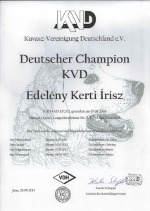 Urkunde Írisz Deutscher Champion KVD