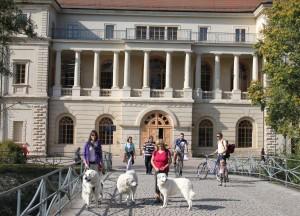 Weimar 21