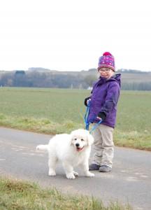 B Wurf Kind und Hund beim Gassi 2